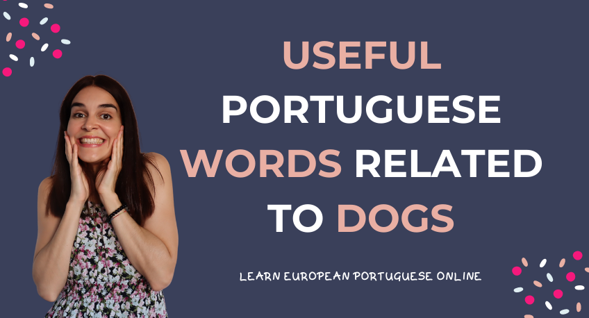 Useful Portuguese Words Related To Dogs