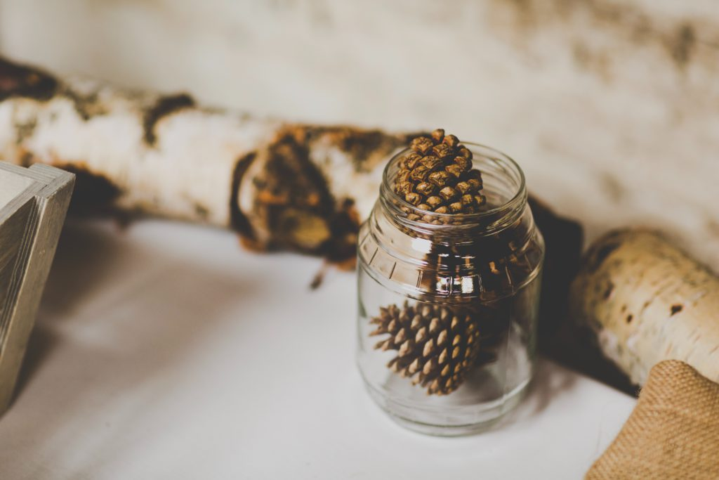 Glass jar containing three fir cones