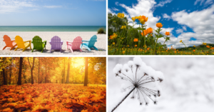 4 seasons, summer, spring, autumn, winter